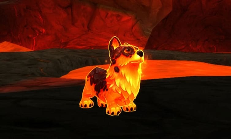 Getting started with pet battles in Warlords of Draenor
