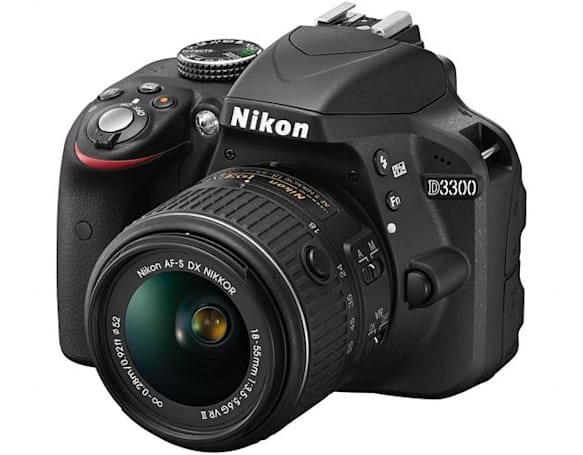 Nikon's D3300 DSLR captures detailed, filter-free photos for $650