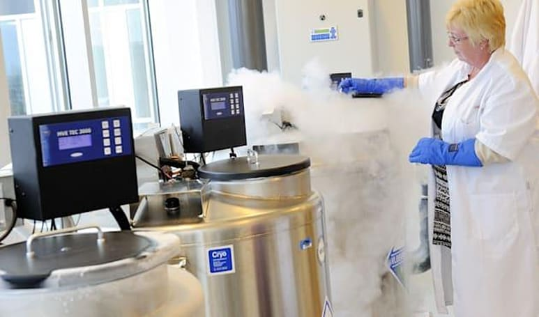 Apple and Facebook will cover the cost of freezing employees' eggs