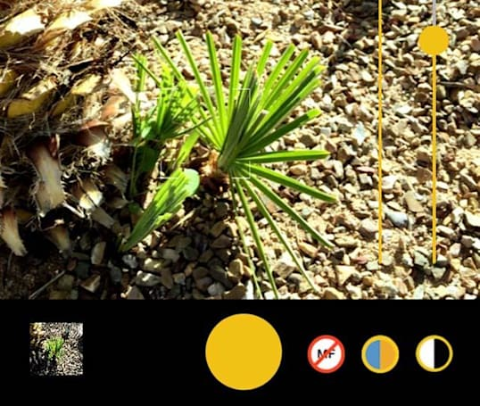 Kimiko Pro Color Cam is a solid camera app for iOS