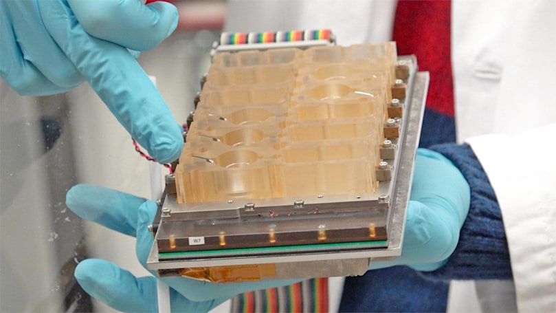 Scientists recreate the female menstrual cycle on a chip