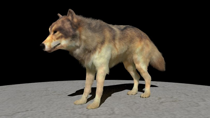 AI is making more realistic CG animal fur