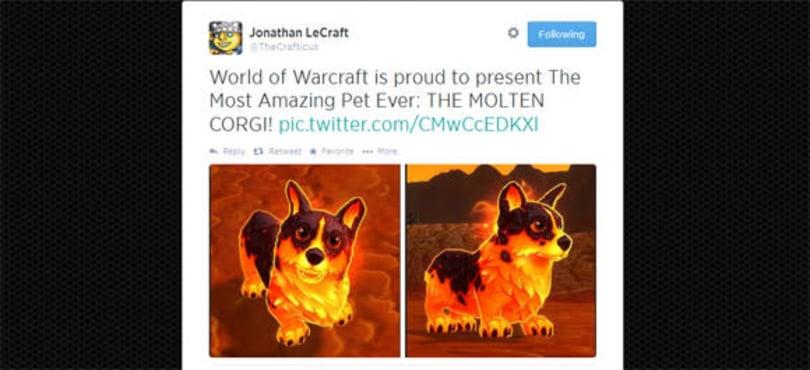 Molten Corgi pet officially on the way