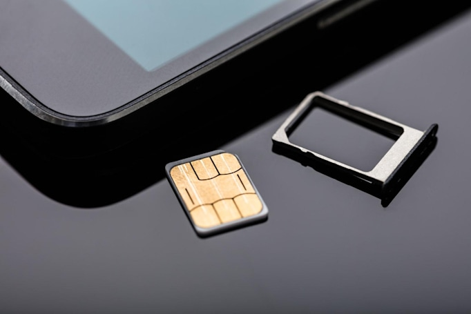 First person sentenced for SIM hijacking faces 10 years in prison