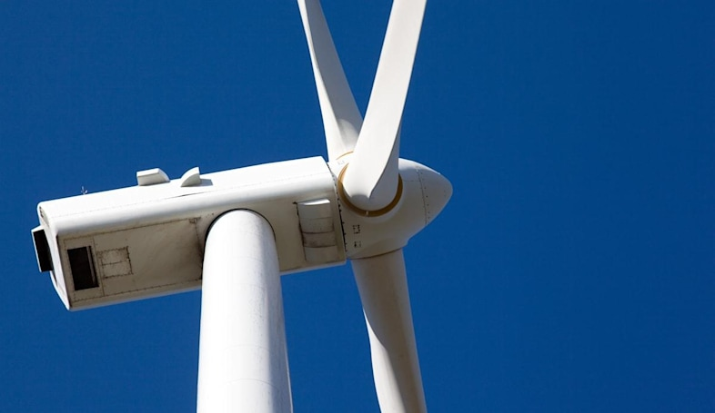 Study maps where golden eagles are safe from wind turbines