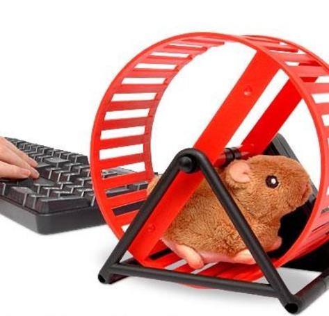 The USB-powered hamster wheel