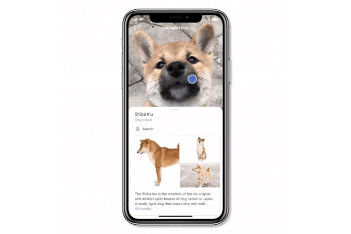 Google adds Lens to its iOS search app