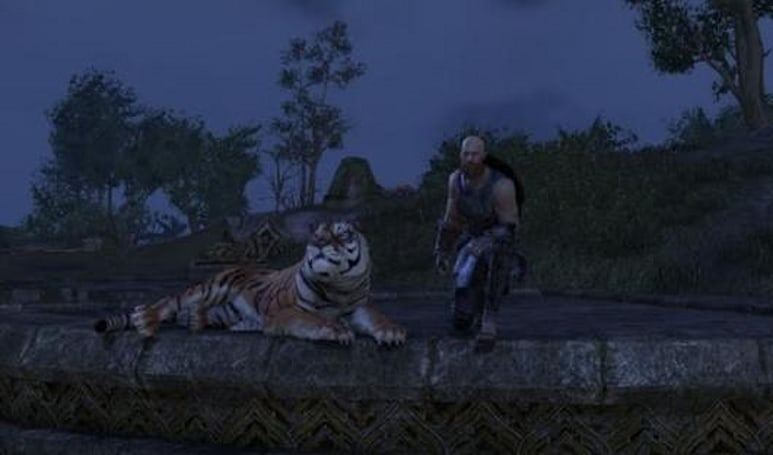Elder Scrolls Online accidentally bans legitimate accounts