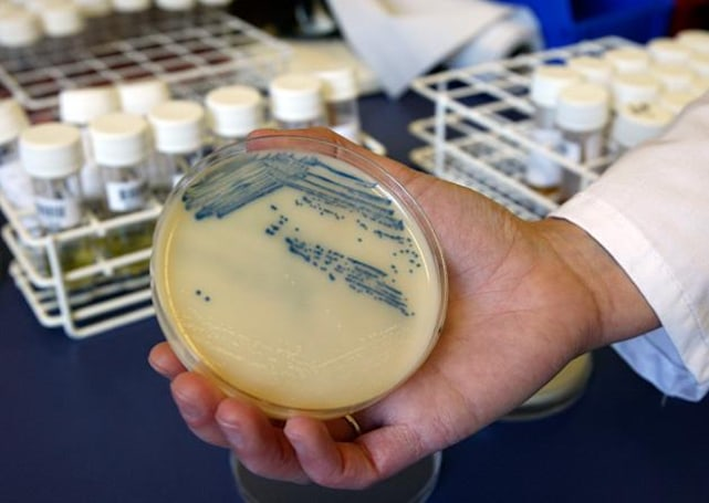 New way to find antibiotics helps fight resistant 'superbugs'