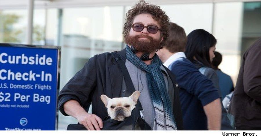 Ask Due Date Star Zach Galifianakis And Director Todd Phillips A
