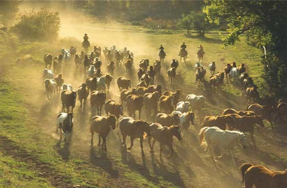 Top 10 Dude Ranch Vacations - AOL Lifestyle