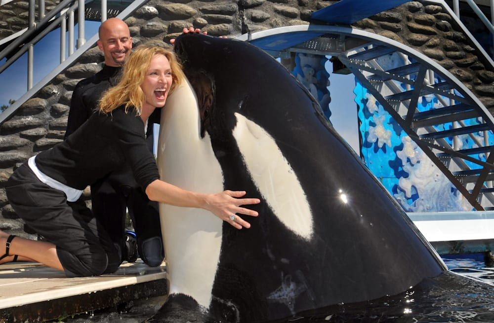 SeaWorld announces hundreds of layoffs across all associated parks