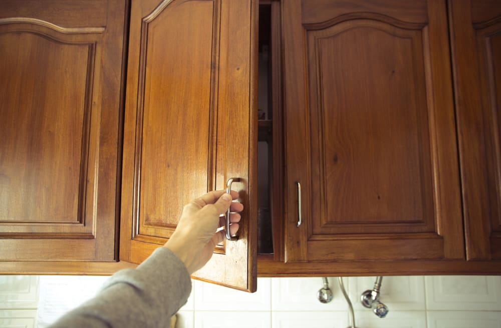 Here\'s how to keep mice out of your kitchen - AOL Lifestyle