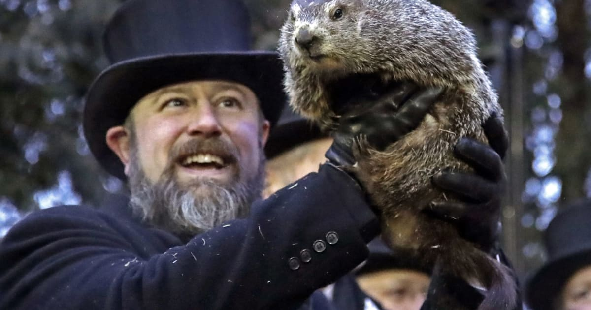 PETA wants to replace Punxsutawney Phil with an animatronic AI
