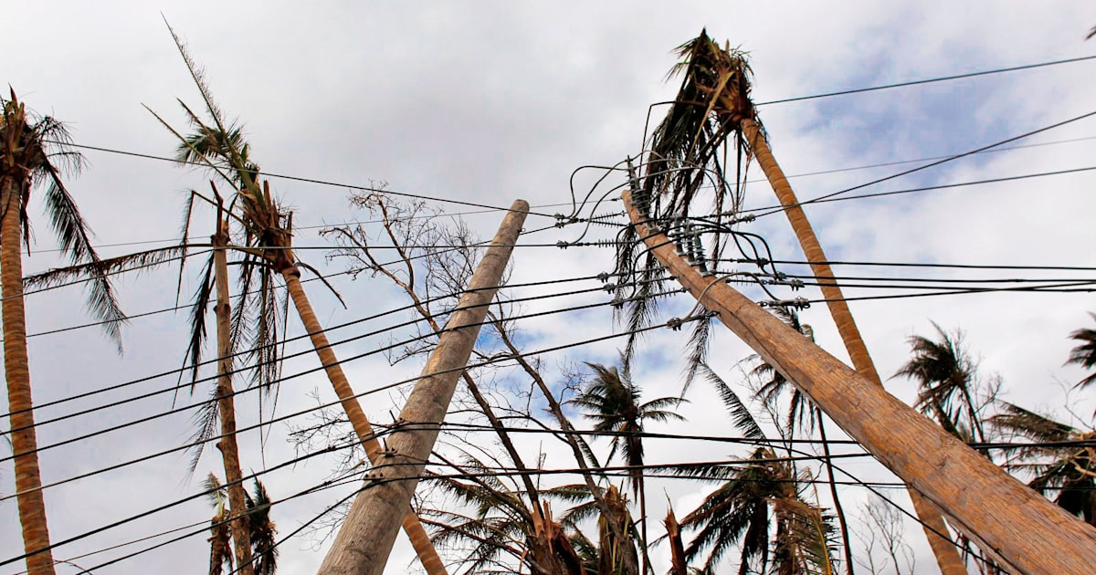 What is the future of Puerto Rico's energy grid?