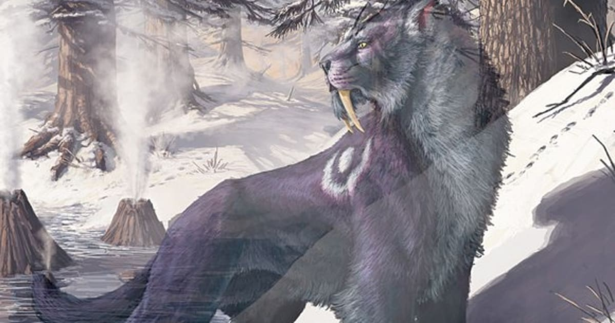 Should you play a druid in WoW?