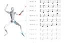 モーションデータをMIDI形式で管理できる『MotionScore』。リアルタイムなアレンジにも対応