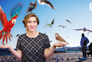 ICYMI: Birds the magical flying machines