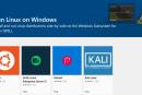 內建 Linux 內核的 Windows 10 正式開放測試