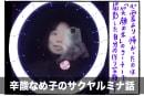 夜の大阪城公園でデジタルアートと肝試しを楽しんできた:辛酸なめ子のサクヤルミナ話
