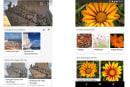 Bing 也可透過手機相機來進行圖像辨識搜尋