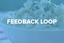 Feedback Loop: Crowdfunding perils, dying passwords, cameras and more!