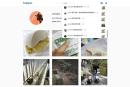 Instagram 网页界面加入通知功能