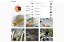 Instagram 網頁介面加入通知功能