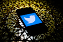 Twitter's new 'Birdwatch' experiment crowdsources fact-checking