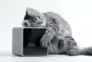 Petcube will let you play with your furry friend via iOS app