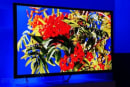Panasonic reveals pricing for (most) 2013 HDTVs, puts plasma R&D on ice
