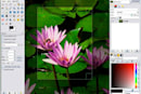 A fight is brewing over ads in the 'open-source Photoshop'