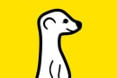Meerkat looks to Android for a chance at beating Periscope