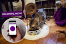 Create your own smart home with littleBits' house-friendly kit