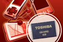 Toshiba sings NAND Flash's praises, thinks you should too