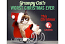 Grumpy Cat's upcoming Christmas special could be the death of cinema