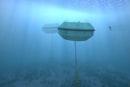 Underwater Aussie wave farms pump both power and water