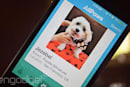 Tinder for pets helps you give shelter animals forever homes