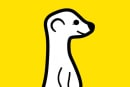 Meerkat is silently fixing a flaw that lets anyone hijack livestreams