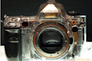 Sony's 25 megapixel Alpha A900 to arrive in August or September
