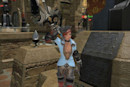 Looking for Guild: Even more FFXIV