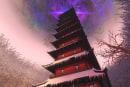 Pirate101 adds Tower of Moo Manchu, tweaks Cool Ranch