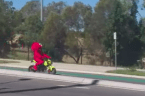 'Tell Me How to Get to Sesame Street?' - Elmo Spotted Biking in Redbank, Queensland