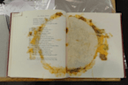 Internet Explodes After Librarian Shares Photo Of A Taco Inside Book