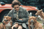 'The Queen uses her dogs as ice breakers'