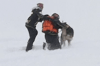 Snow rescue dogs go through rigorous training in the Alps