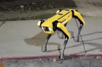 Creepy robot dog patrolling the streets at night