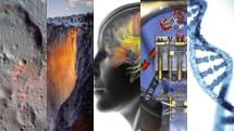 年に2週だけ現れる炎の滝・人の脳は常に「プランB」を用意・人の胚ゲノム操作を一部容認の提言:画像ピックアップ69