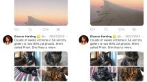 Twitterが画像のトリミングにニューラルネットワークを使用。「目の行きやすさ」を基準に残念な写真もお色直し