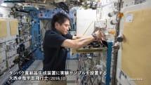ネコ用人工血液の開発成功、国際宇宙ステーション「きぼう」微小重力下実験が貢献😺
